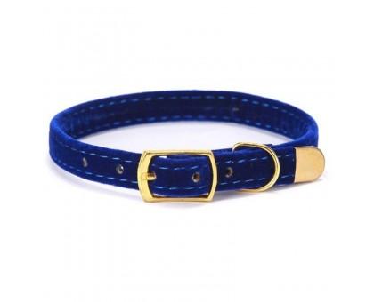 Antkaklis katėms ir šunims Mini Blue; 22-27cm