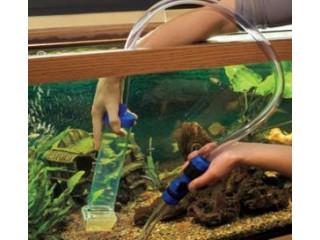 Akvariumo priežiūra – pirmi žingsniai